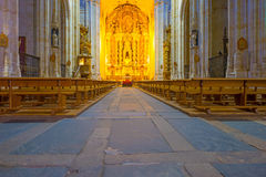 Detail of the medieval cathedral of Salamanca stock image