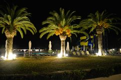 Detail of Messonghi Beach Resort at night. Palm trees in a night photography in Messonghi Beach Resort in Corfu island, Greece - Europe Royalty Free Stock Photo