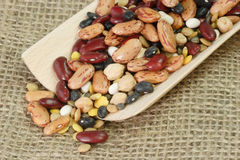 Detail from mixed dried Beans. On a wooden shovel stock photography