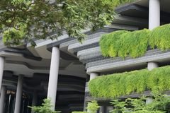 Detail of a modern building in singapore covered by vegetation. Green vegetation growing on a modern building in singapore composed of pillars and different Stock Photography