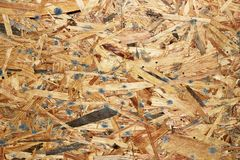Detail of mold infected wooden plank. Resulted from dampness Royalty Free Stock Photo