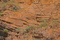 DETAIL OF MOLDED ROCK FORMATION. Molded rock layers on a sandy bluff at the coast Stock Photography