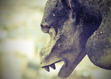 Detail of the monstrous statue called Gorgolla in the cathedral. Of Notre Dame before the terrible fire of the year 2019 with vintage old effect stock photography