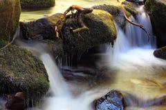 Detail on a mountain stream Stock Image