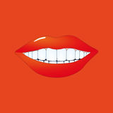 Detail of mouth on orange Royalty Free Stock Photography