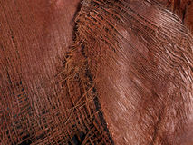 Detail Natural Plant Fibres. Detailed Closeup Natural Fibres, quality texture close up of course brown natural plant fibres Stock Images