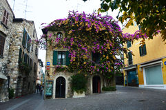 Detail of nice house covered of flowers violet and yellow, foggy day, Sirmione, Lake Garda, Italy Royalty Free Stock Photo