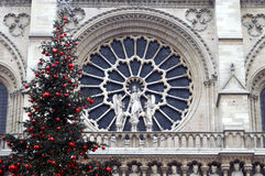 Detail of the Notre Dame Paris. Detail of the Notre Dame cathedral in Paris with Christmas tree Royalty Free Stock Photography