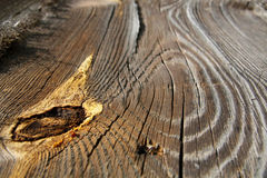 Free Detail Of Old Floor Royalty Free Stock Image - 5294966