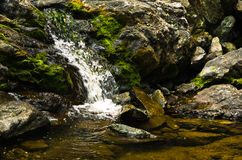 Free Detail Of Rocks In Water At Black River Gorge Stock Photography - 71910202