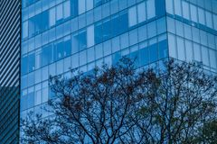 Detail of an office and business building in Mexico City. Detail of an office and business building on South Insurgentes Avenue in Mexico City with blue windows stock photo
