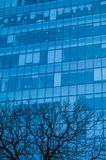Detail of an office and business building in Mexico City. Detail of an office and business building on South Insurgentes Avenue in Mexico City with blue windows stock photos