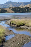 Detail of Okuti river. In South Island of New Zeland Royalty Free Stock Images