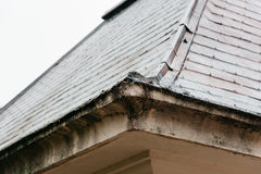 Detail of old building cornice. In a park Stock Images