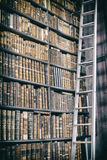 Detail of old classic library Royalty Free Stock Image