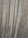 Detail of old cracked graying wood Stock Photos