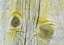 Detail of an old door. Royalty Free Stock Image