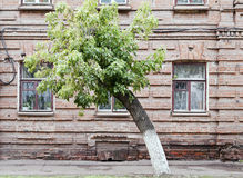 Detail of the old facade of the house. Photographed in Russia, in the city of Orenburg Royalty Free Stock Photography
