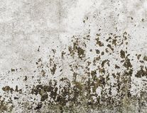 Old grungy wall texture Stock Photo