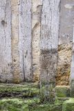 Detail of an old half-timbered house with dirty walls and weathered wood,damaged, bottom wall , abstact photo France Royalty Free Stock Images
