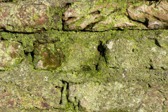 Detail of an old monumental wall. Royalty Free Stock Photos