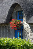 Detail of old thatched cottage Stock Photography