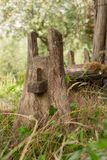 Detail of an old unknown timber object. In a grass pasture royalty free stock image