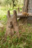Detail of an old unknown timber object. In a grass pasture royalty free stock photos