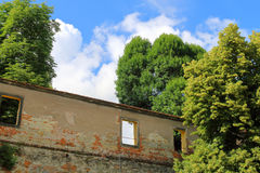Detail of old wall surrounded by trees Royalty Free Stock Photography