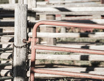 Detail of Old Wood and Metal Livestock Chute Rural America (Anti Royalty Free Stock Photography