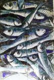 Detail old wooden door decorated with a painting of fishs. Stock Image