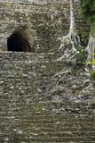Detail of the overgrown Mayan pyramid of Dzibanche stock photo