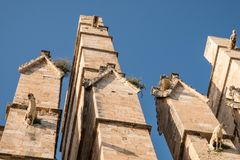 Detail of the Palma de Mallorca Cathedral in Spain. On a sunny day with blue sky as background Stock Photography