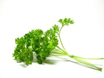 Detail parsley herb Stock Photo