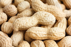 Detail of peanuts in shells Royalty Free Stock Image