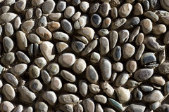 Detail of a pebble floor Royalty Free Stock Photos