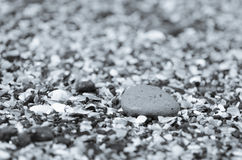 Detail of a pebble stock photography