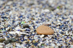 Detail of a pebble royalty free stock photo
