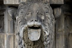 Lion with tongue. A detail of the Petrusfountain at Cologne Cathedral, a lion with his tongue Royalty Free Stock Photography