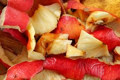 Detail photo - fruit peels, mostly apples - home composting.  stock image