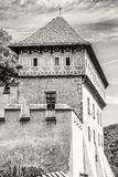 Detail photo of gothic castle Karlstejn, colorless Royalty Free Stock Photography