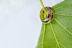 Detail photo of two golden wedding rings threaded through the le Stock Images