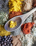 Detail photography of herbs and spices collection Royalty Free Stock Photos