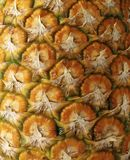 Detail pineapple close-up. Background or texture Stock Photography