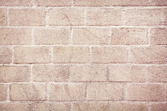 Detail of pink brick wall Stock Photography