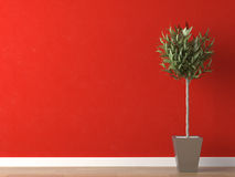 Detail of plant on red wall Stock Photos