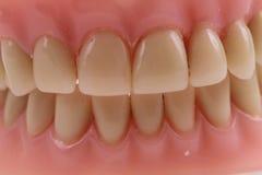 Detail plastic teeth Royalty Free Stock Photos