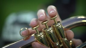 Detail of the player`s fingers on trumpet stock footage