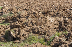 Detail of a ploughed field Stock Photo