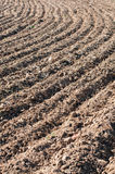 Detail of a plowed field Royalty Free Stock Photography